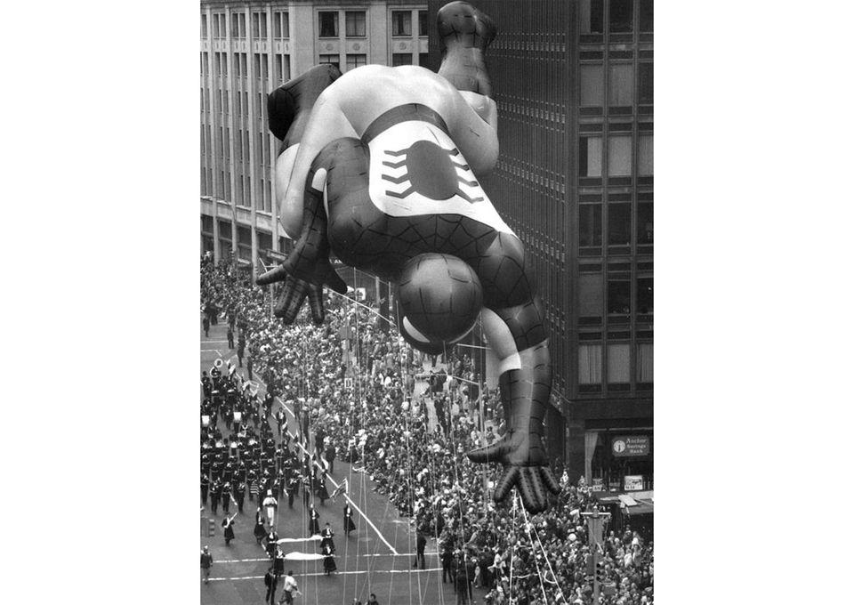 Spiderman flies down Broadway during his debut in
