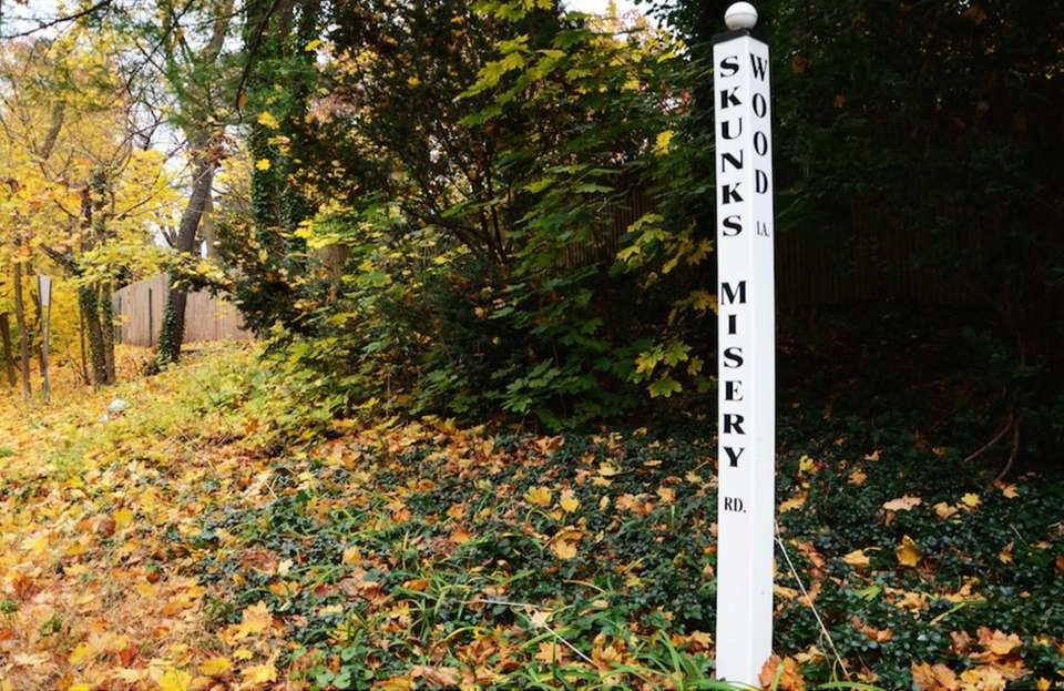 This North Shore road in Lattingtown shares its