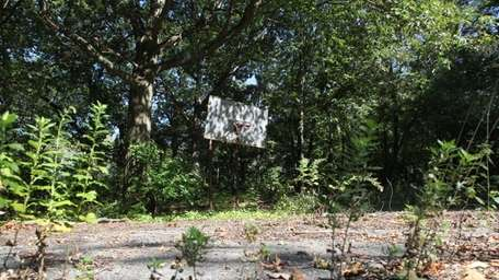 Alvan O Petrus Park, shuttered for years, is