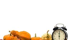 Timing tips for Thanksgiving dinner.