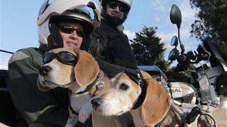 Regitze Murat and Philippe Murat with their Beagles