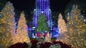 The 82nd Annual Rockefeller Center Christmas Tree Lighting