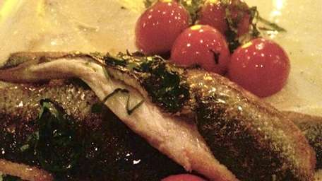 Fillet of Branzino with roasted tomatoes at Porto