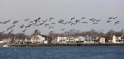 Among the attractions in Baldwin and Baldwin Harbor