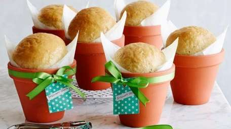 Rosemary bread in a flower pot makes a