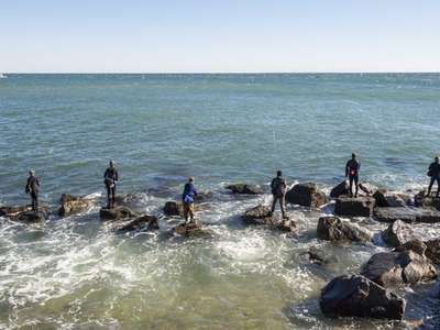 Surfcasters fish for striped bass under the Montauk