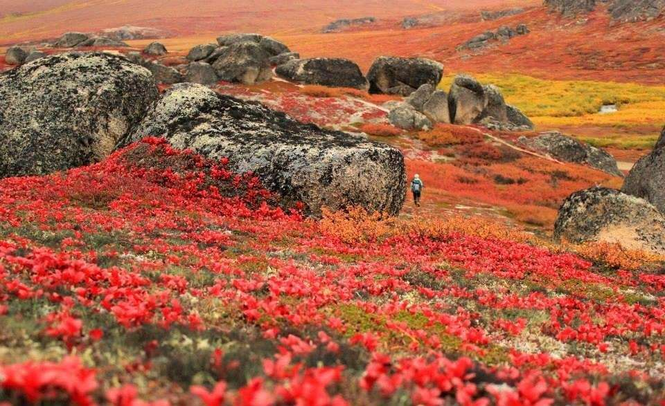The Bering Land Bridge National Preserve in Alaska