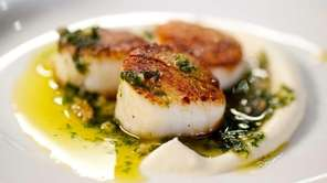Seared scallops are served with a cauliflower puree