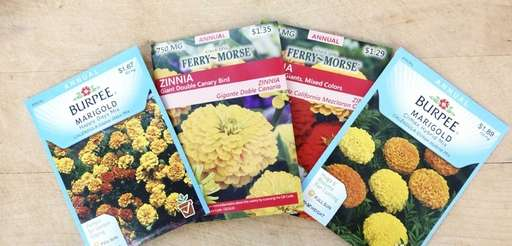 Packets of garden flower seeds from two popular