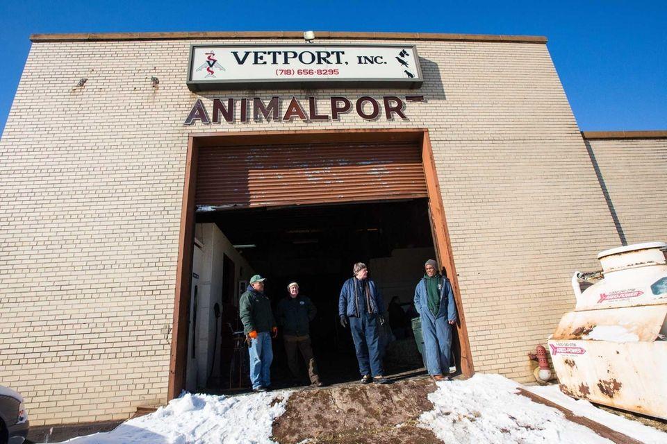 The entrance to Vetport Animal Hospital at JFK