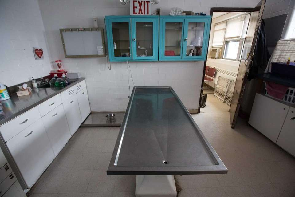 The examining room where the animals get vaccines